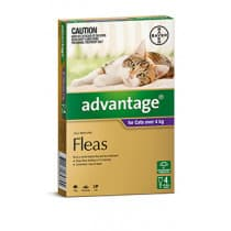 Advantage Cat 4kg+ Large Purple 4 Pack